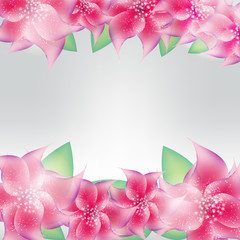 Stylish floral background vector illustration