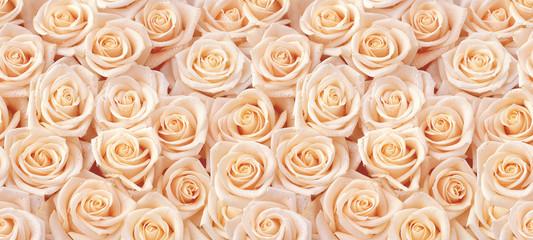 Photo sur Plexiglas Roses Beige roses seamless pattern
