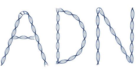 ADN en lettre