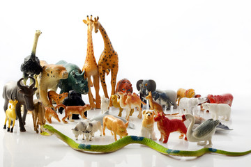 animals plastic toys