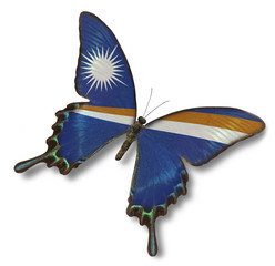 Marshall islands flag on butterfly