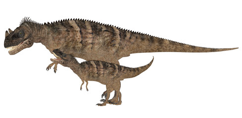Adult and Young Ceratosaurus