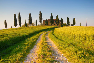 Wall Mural - Villa in Toscana con cipressi