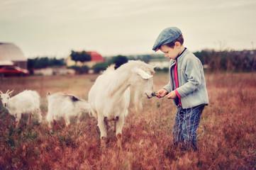 Small herdboy