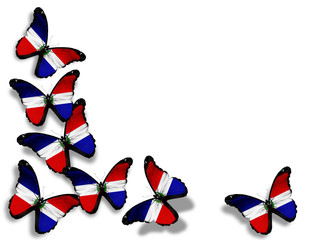 Dominican Republic flag butterflies, isolated on white