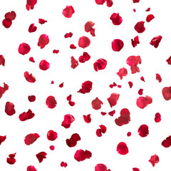 Seamless rose petals