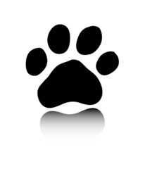 Black paw on white background