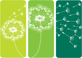 three green cards with dandelion flower in silhouette