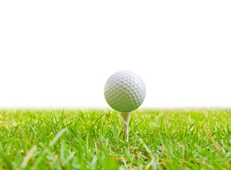 golf ball and tee grass