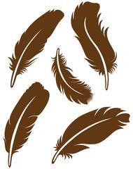 Feather Set