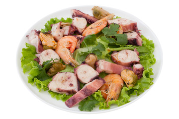 seafood salad with parsley on white plate