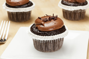 Chocolate Frosted Cupcake