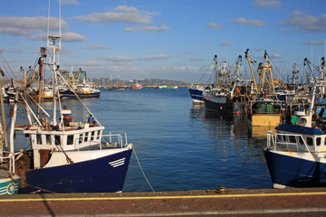 Trawlers in Brixham Harbour