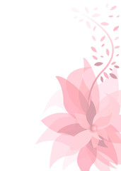 pink summer background with flower