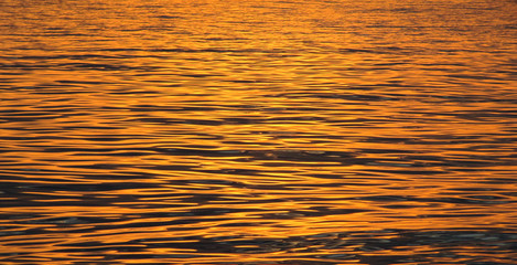 Gold wavy surface of the sea on a sunset