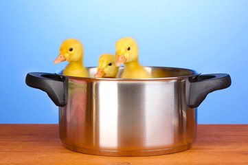 Duckling in saucepan on wooden table on blue background