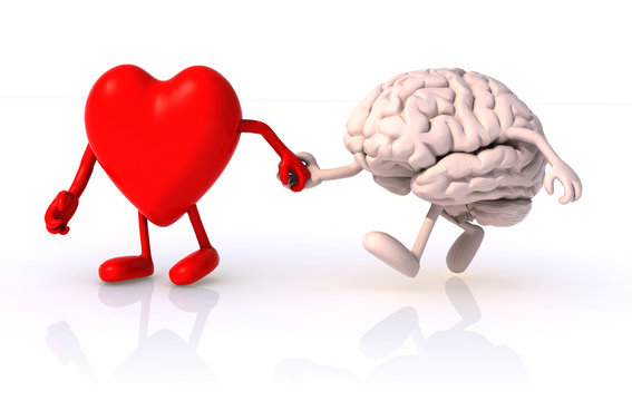 heart and brain that walk hand in hand