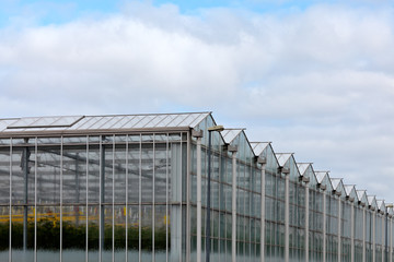 Corner view of a greenhouse