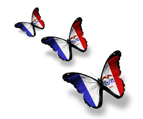 Three Iowa flag butterflies, isolated on white