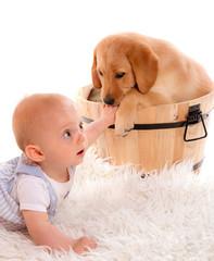 bébé de 7 mois et chiot labrador