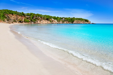 Wall Mural - Cala Llenya in Ibiza with turquoise water in Balearic
