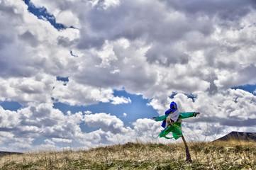 Epouvantail dans un champ, ciel nuageux