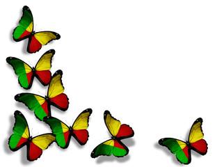 Benin flag butterflies, isolated on white background