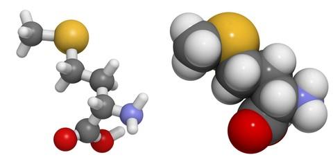 Selenomethionine (Sem)  molecule.