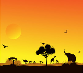 animals and trees against a sunset in the desert
