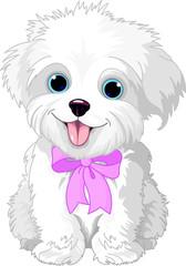 Printed kitchen splashbacks Fairytale World White lap-dog