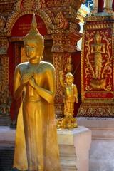 Baby buddha statue at Thai temple, Chiangmai, Thailand