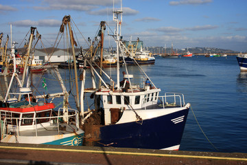 trawlers in Brixham harbour