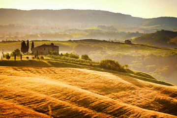 Foto op Canvas Toscane View of typical Tuscany landscape