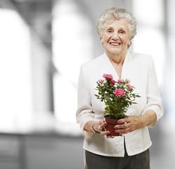 senior woman holding a flower pot, indoor