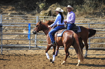 Young woman is riding a horse