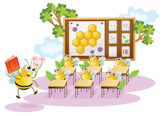 honey bees in a classroom
