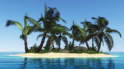 kleine Insel mit Palmen