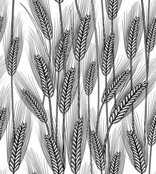 Seamless wheat ears ( transparent background)