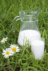 Fresh milk over grren grass background