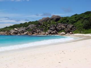 Typical Tropical Beach