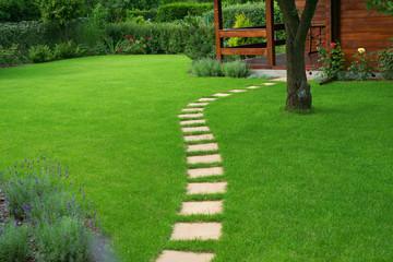 Fototapeta Beautiful lawn and  path