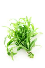 Herb Series - Tarragon