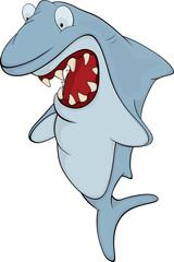 Shark. Cartoon