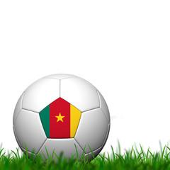 3D Soccer balll Cameroon Flag Patter on green grass over white b