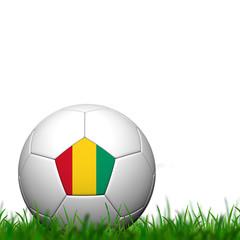 3D Soccer balll Guinea Flag Patter on green grass over white bac