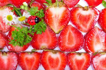 fresh strawberry slices and ladybugs
