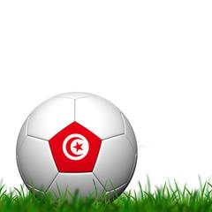 3D Soccer balll Tunisia Flag Patter on green grass over white ba