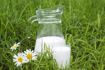 Fresh milk upon green grass background