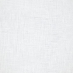 white canvas with delicate grid background or texture