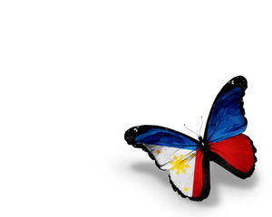 Philippine flag butterfly, isolated on white background